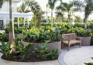 Book an Event at the Els Center of Excellence Sensory Arts Garden and Pavilion